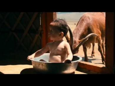 Bébé(s) : comment ça se passe au bout du monde ?