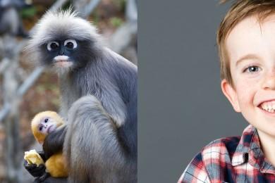 Zoo : vos enfants en soigneur !