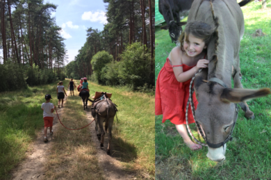 VACANCES NOMADES : Chevaucher – A dos d'âne